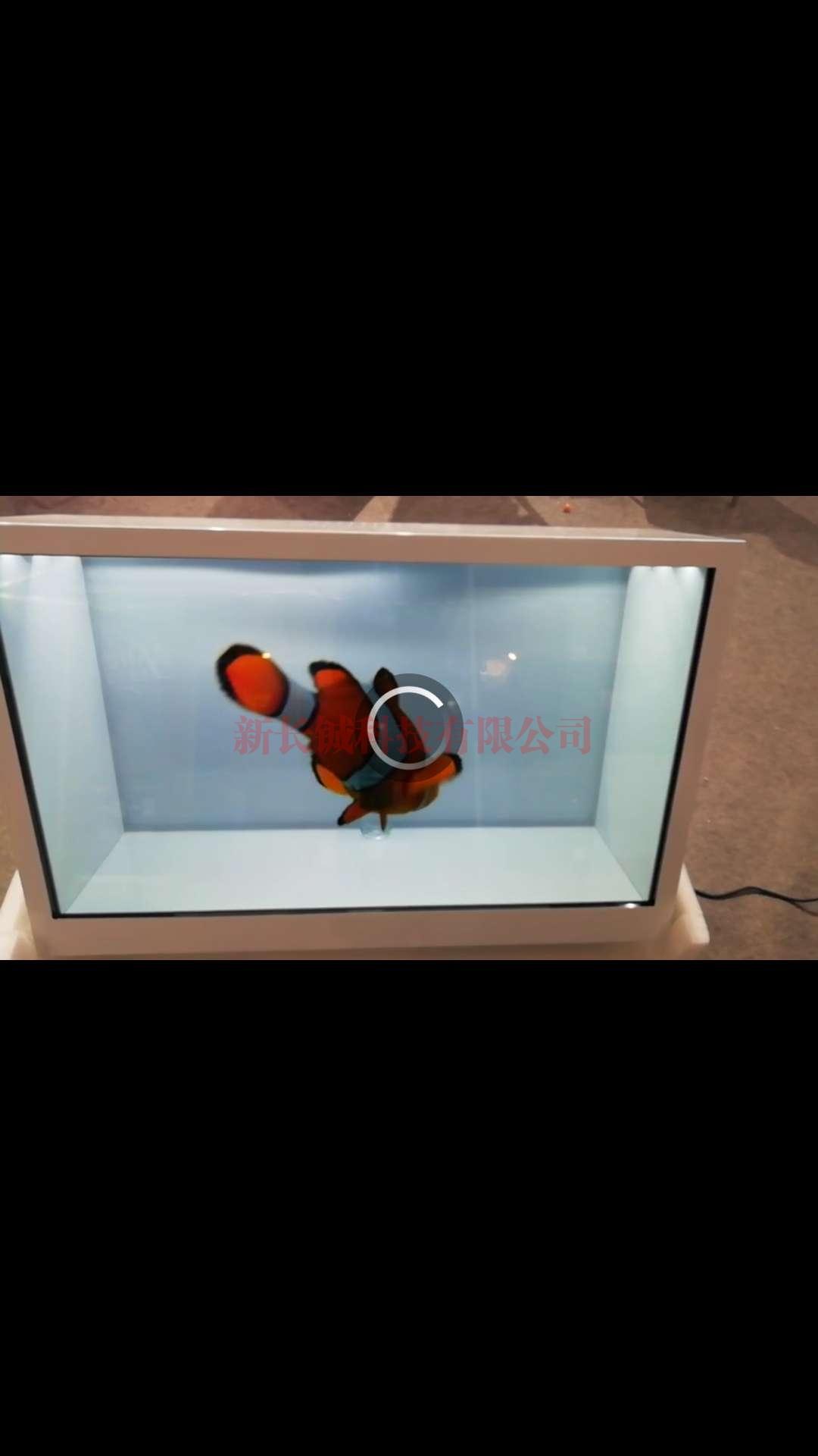 深圳液晶透明柜